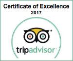 Trip Advisor Green Partner